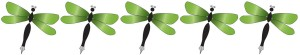 DragonFlyRating5